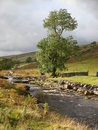 Yorkshire dales national park stream near garsdale in cumbria on the Royalty Free Stock Photo