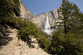 Yosemite falls waterfall in a forest valley national park california usa Royalty Free Stock Photos