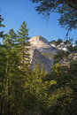 Yosemite half dome the majestic framed by trees national park california usa Royalty Free Stock Photo