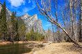 Yosemite Landscape Stock Photos