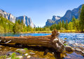 Yosemite merced river el capitan and half dome in california national parks us Royalty Free Stock Photo