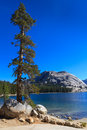 Yosemite national park view of lake tenaya tioga pass california Royalty Free Stock Photography