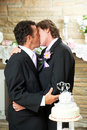 You May Kiss the Groom Royalty Free Stock Photos