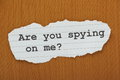 Are You Spying on me? Royalty Free Stock Photo