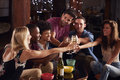 Young adult friends having a party at home making a toast Royalty Free Stock Photo