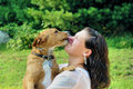 Young adult woman getting licked by her dog Stock Image