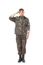 Young army soldier saluting full length portrait of isolated on white background Stock Image