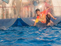 Young Asian boy playing inside a floating water walking ball Royalty Free Stock Photo