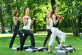 Young and attractive people doing fitness Royalty Free Stock Photo
