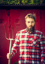 Young bearded farmer red checkered shirt with old pitchfork looking at camera Royalty Free Stock Photo