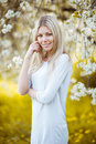 Young beautiful blonde woman in a dress in blooming apple garden outdoors Stock Photography