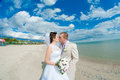 Young and beautiful bride and groom on the beach in summer Stock Photos
