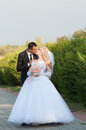 Young and beautiful bride and groom kissing Royalty Free Stock Photo