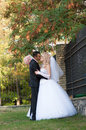 Young and beautiful bride and groom kissing Stock Photos
