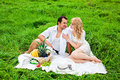 Young beautiful couple on picnic happy making in the park Royalty Free Stock Image