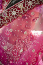 Young beautiful hindu bride looking through jeweled veil at camera Royalty Free Stock Images