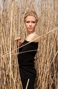 Young beautiful slim girl in the reed Stock Image