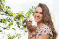 Young beautiful woman in blooming garden enjoying freetime and relaxing the nature Royalty Free Stock Photography