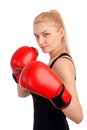 Young beautiful woman boxing gloves studio shot over white background Royalty Free Stock Image