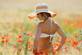 Young beautiful woman on golden wheat field in summer Royalty Free Stock Photo