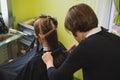 Young beautiful woman having her hair cut Royalty Free Stock Photo