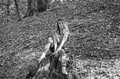 Young beautiful woman model with long hair in jeans and a tank top walks through the forest park among trees and vegetation posing Royalty Free Stock Photo