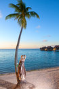 The young beautiful woman and palm tree on seacoast sea tropical landscape with a rose a Royalty Free Stock Photography
