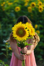 Young beautiful woman stands in a field of sunflowers Royalty Free Stock Photo