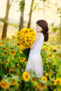 Young beautiful woman in a sunflower field Royalty Free Stock Photo