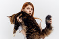 Young beautiful woman on white  background holds a cat, maine coon, pets Royalty Free Stock Photo