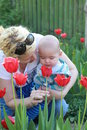 Young blonde woman holding tulip people family motherhood and children concept happy mother hugging adorable baby over tulips Royalty Free Stock Photos