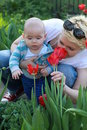 Young blonde woman smeling tulip people family motherhood and children concept happy mother hugging adorable baby over tulips Stock Image
