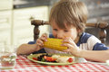 Young boy eating meal in kitchen Stock Images