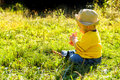 Young boy exploring world around him grassy field late summer early autumn afternoon golden hour side lit scene examining red Stock Photography