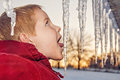 image photo : Young boy licking an icicle