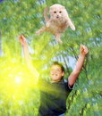Young boy and  pet cat Stock Images