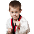 Young boy training karate. Stock Photography