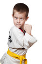 Young boy training karate. Royalty Free Stock Photos