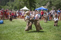 Young boys compete in three legged race ouray colorado july indpendence day annual picnic event Royalty Free Stock Photography