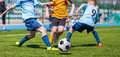Young boys kids kicking soccer football on the sports field. Royalty Free Stock Photo