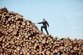 Young business man on his way to the top of large pile of cut wooden logs Stock Images