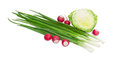Young cabbage, red radish and stalks of green onion Royalty Free Stock Photo