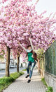 Young caucasian woman is jumping under the flowering sakura tree at street natural beauty Stock Photos