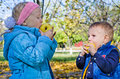 Young children eating apples Stock Photo