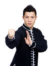 Young Chinese Kung Fu fighter Royalty Free Stock Photo