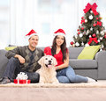 Young couple celebrating christmas with their dog at home shot tilt and shift lens Royalty Free Stock Image