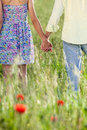 Young couple holding hands loving in a display of their affection close up view from behind of the and torso in a field of Royalty Free Stock Photo