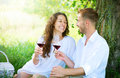 Young couple in a park picnic relaxing and drinking wine Royalty Free Stock Photography