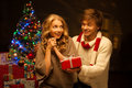 Young couple presenting christmas gift Royalty Free Stock Photography