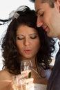 Young couple raising wedding toast Royalty Free Stock Photos